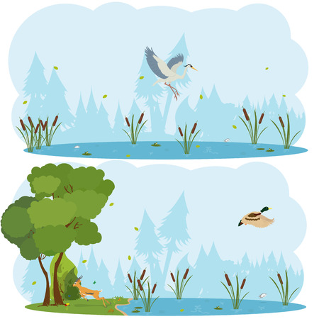 fog: nature scenes. Scene lakes and swamps with living birds. Heron flying over the lake. duck is flying over the marsh. vector Illustration