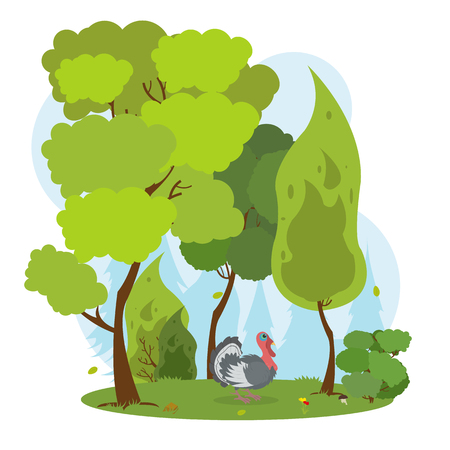 gamebird: wild turkey standing among the trees in a dense forest. turkey in the forest. vector