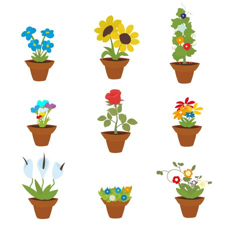 tulips in green grass: Spring Flowers In Pots, Isolated On White Background, Vector Illustration