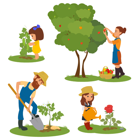 family gardening: adults and children involved in gardening. a family with children to care for plants. People harvest. vector