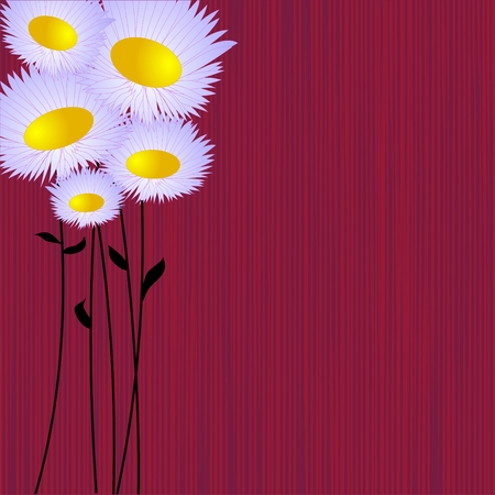 free holiday background: Daisies