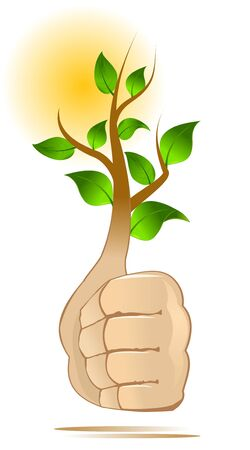 approving: Tree growing from hand gesture ok; recycle approving concept Illustration