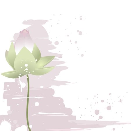 Delicate lotus flower Vector
