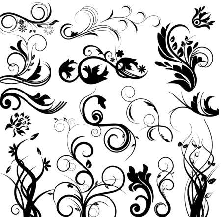 floral vector: Vector floral set