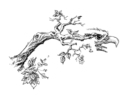 twigs: Tree branch with eagle head sketch  Illustration