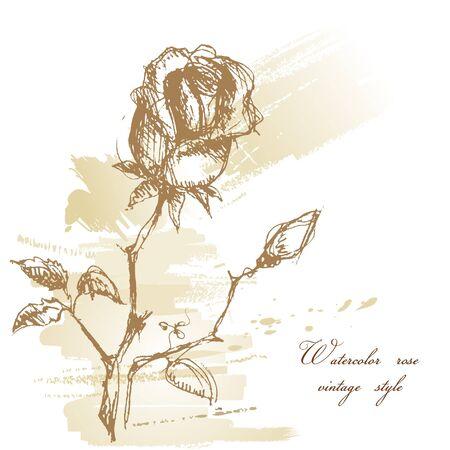 Rose watercolor greeting card  Vector