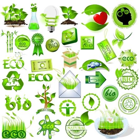 Mensaje de colección, ecológica y biológica de iconos de naturaleza detallada  Ilustración de vector