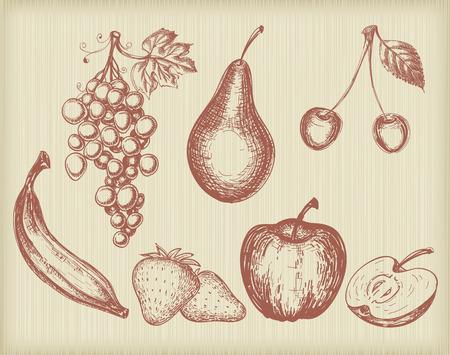 Vintage fruits set Vector
