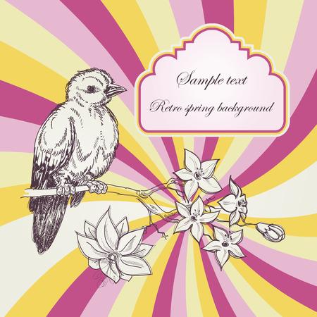 Retro spring background; birdie and jasmin branch  Vector