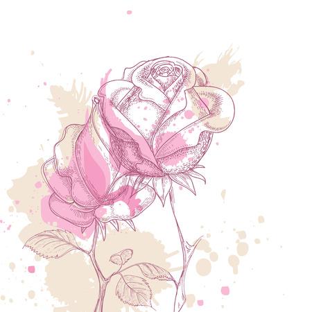 Grunge rose greeting card Vector