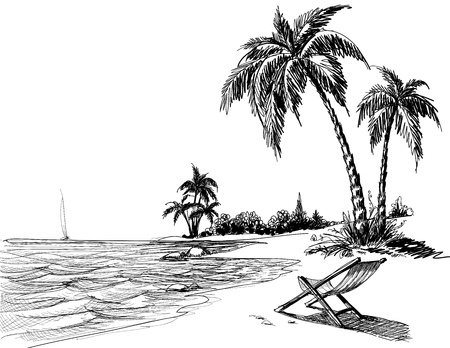 palmtree: Summer beach pencil drawing