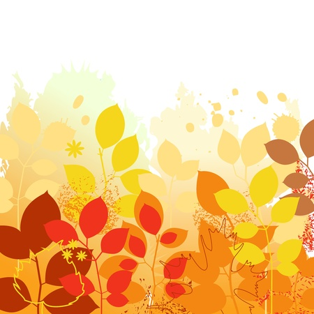 Colorful autumn background 矢量图片
