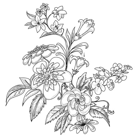 flores: Graphic ornate flowers  Illustration