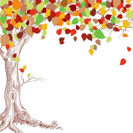 feuillage: Arbre d'automne de fond Illustration