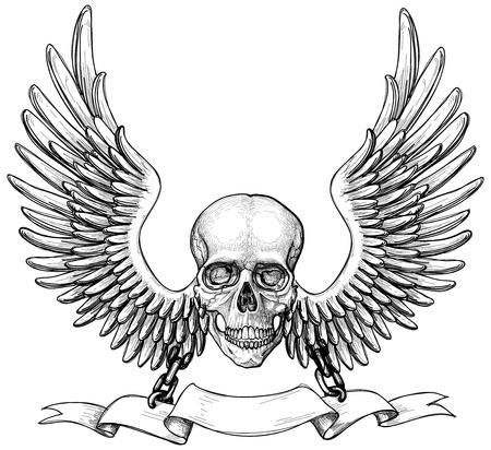 Skull and wings heraldry Stock Vector - 10565975