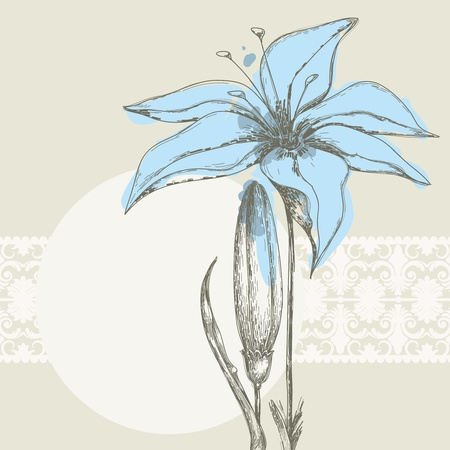 lily buds: Pastel floral background, white lace frame for text Illustration