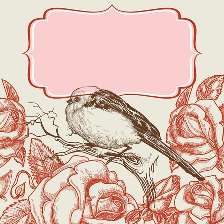 flores vintage: Bird and roses invitation template with frame for text