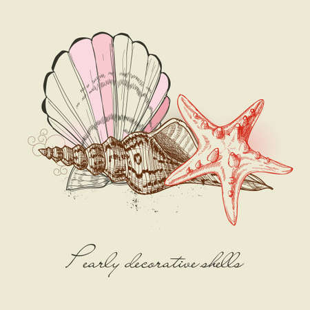 conch: Shells and starfish background Illustration
