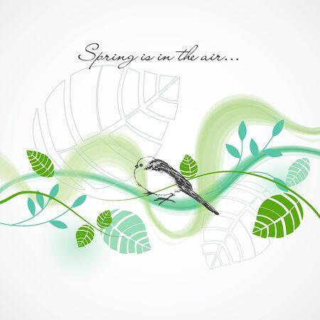 coil spring: Fresh spring background