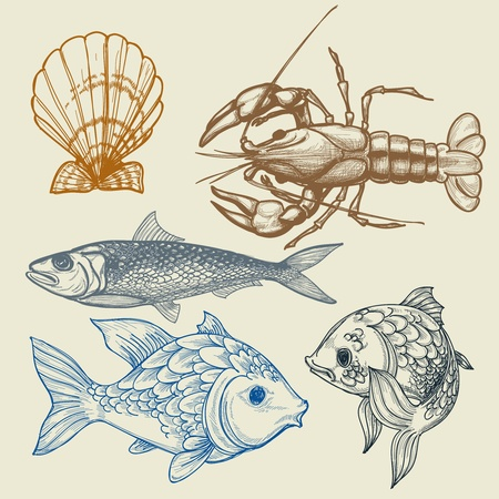 Fish, lobster, shell set Vector