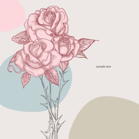Bouquet of roses illustration Vector