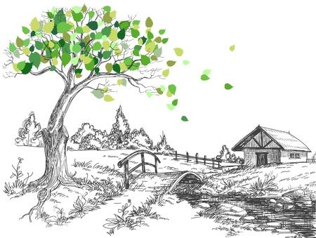 Foglie verdi primavera albero, paesaggio rurale, ponte sul fiume