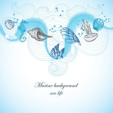 sea line: Sea background, marine fauna hand drawn elements