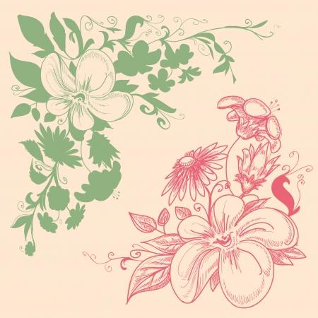 esquineros florales: Adornos florales de esquina Vectores