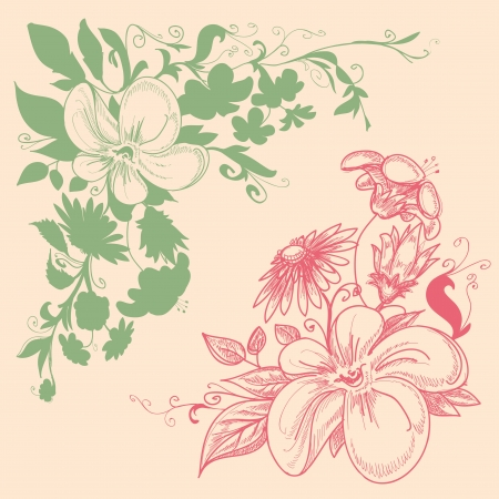 Floral corner decorations Vector