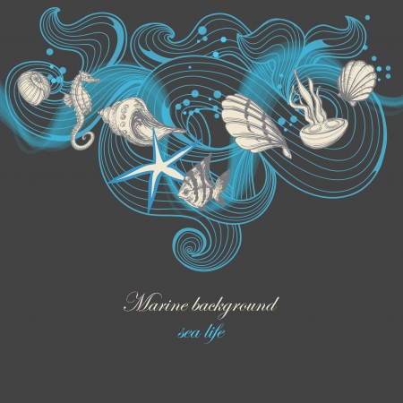 Marine background, sea life elements  Vector