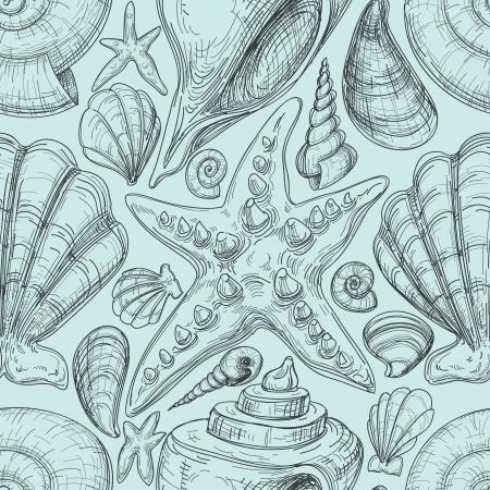 ostra: Playa perfecta patr�n con conchas y estrellas de mar dibujo Vectores