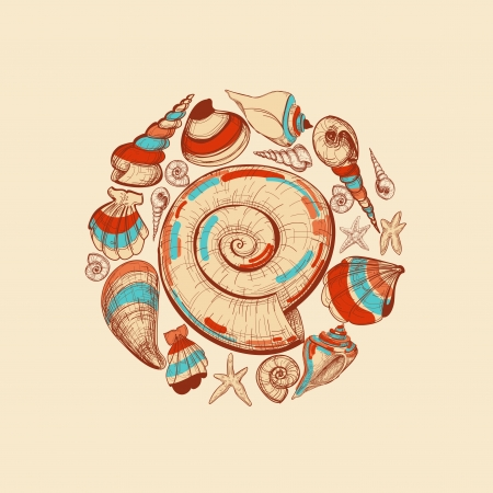 cockle: Shells vector round decoration