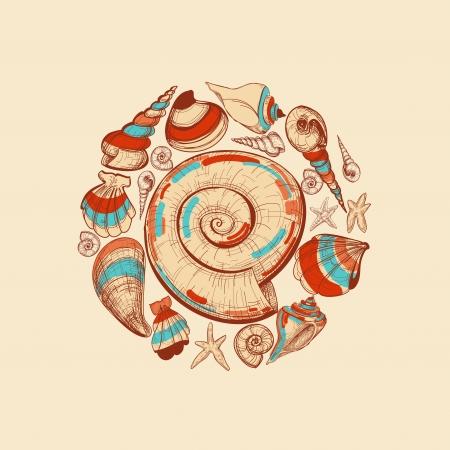 seestern: Shells Vektor runden Dekoration Illustration