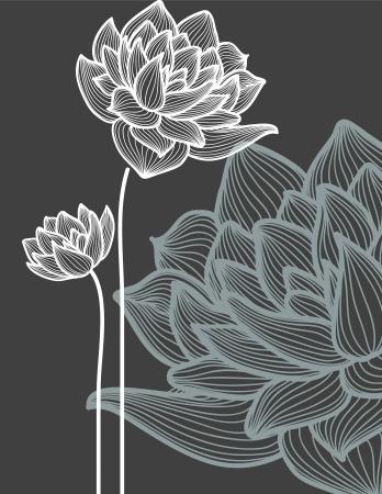 flor loto: flores sobre fondo negro