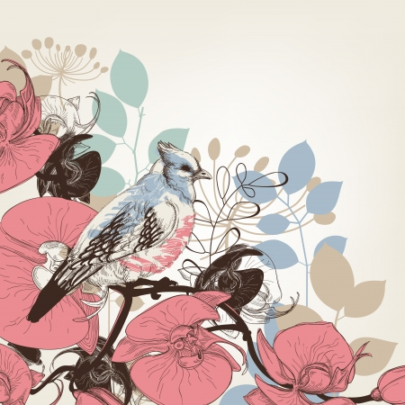 tropics: Orchid flowers and bird retro background Illustration