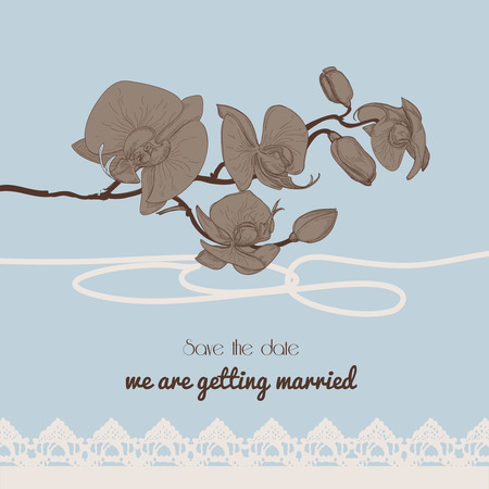 discretion: Vintage style wedding invitation, orchid twig and old-fashioned lace border  Illustration