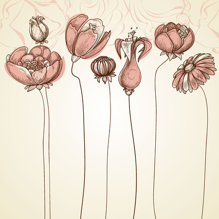 Delicate flowers background. Stylish floral card, hand drawn illustration for different events