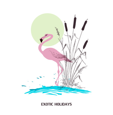 cattail: Exotic holidays poster, water, flamingo and cattail