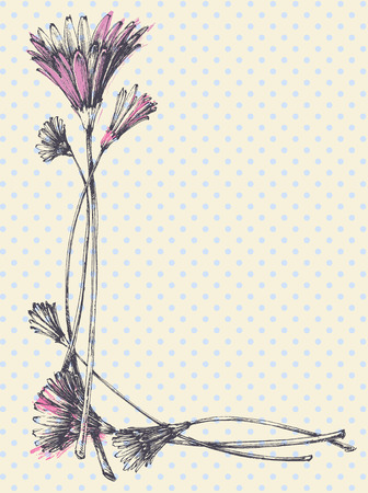 calendula flower: Hand drawn cute floral frame