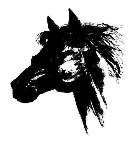 paddock: Black horse head carbon drawing