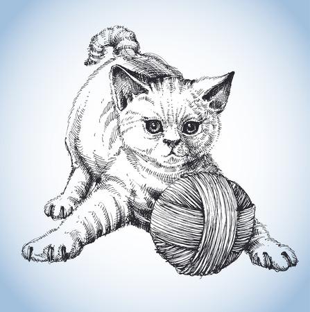 gato jugando: Un lindo gato jugando con un ovillo de lana