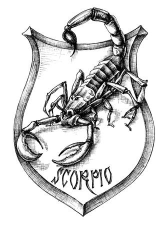 signes du zodiaque: Scorpion Scorpion h�raldique de signes zodiacaux Illustration