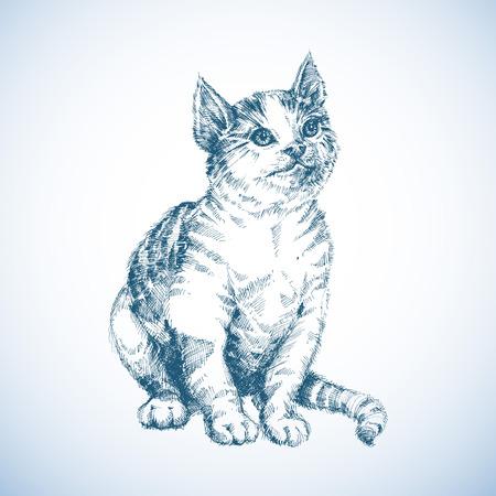 hairy legs: Cute cat sketch Illustration