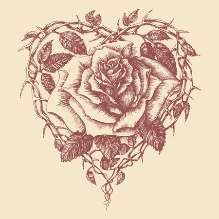 heart sketch: Heart rose vector illustration