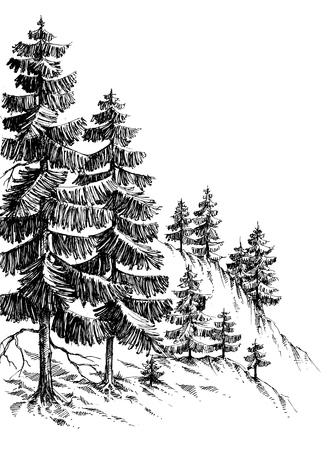 dessin noir et blanc: Forêt de pins, montagne d'hiver paysage dessin Illustration