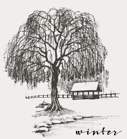 Zima szkic, wierzba