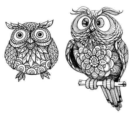 wise owl: Cute owls
