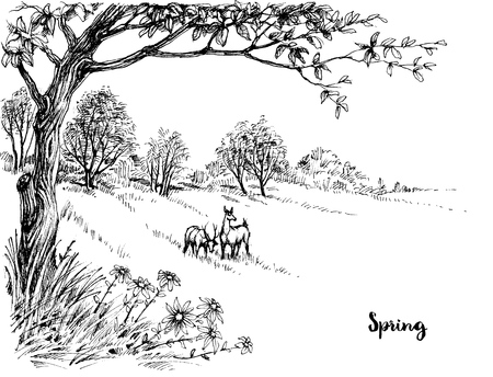 landscape nature: Spring in the woods sketch