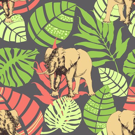nature pattern: Nature pattern, exotic jungle leaves and elephant