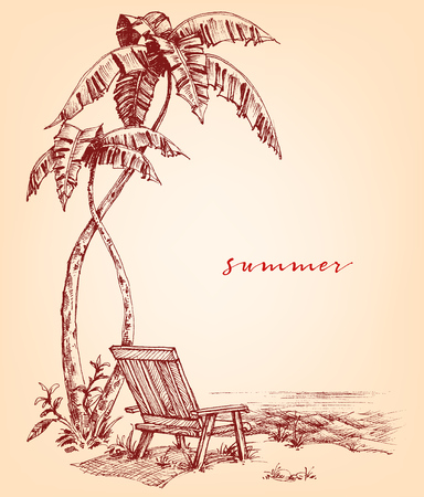 pal: Summer sketch. Palm trees and sunbed on the beach